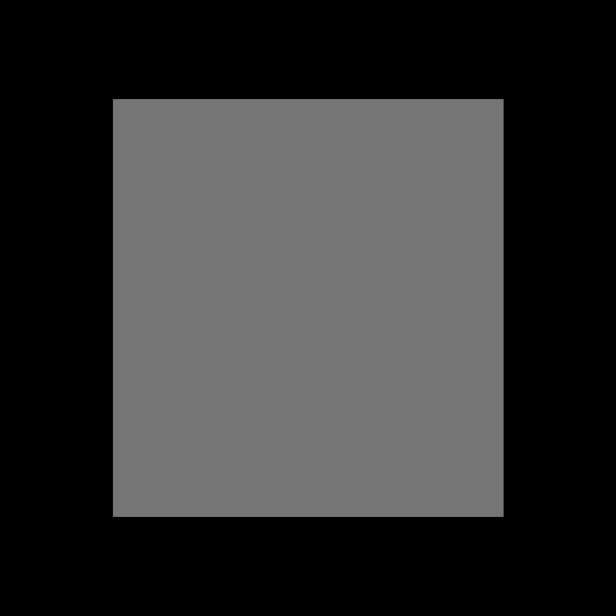 Opening Summer Festival